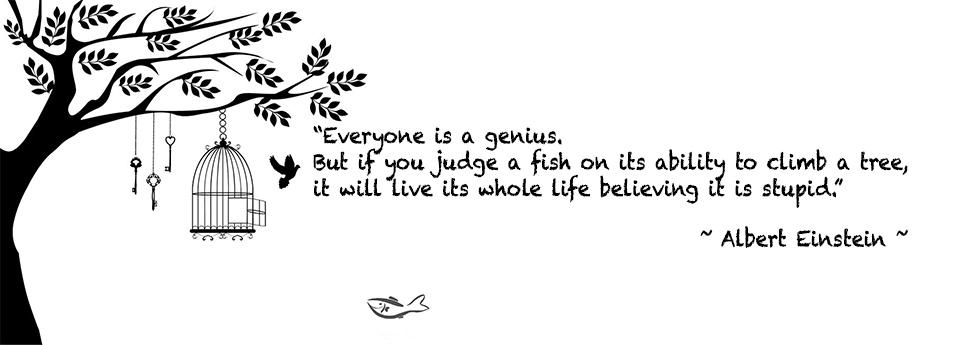 Everyone is a genius.