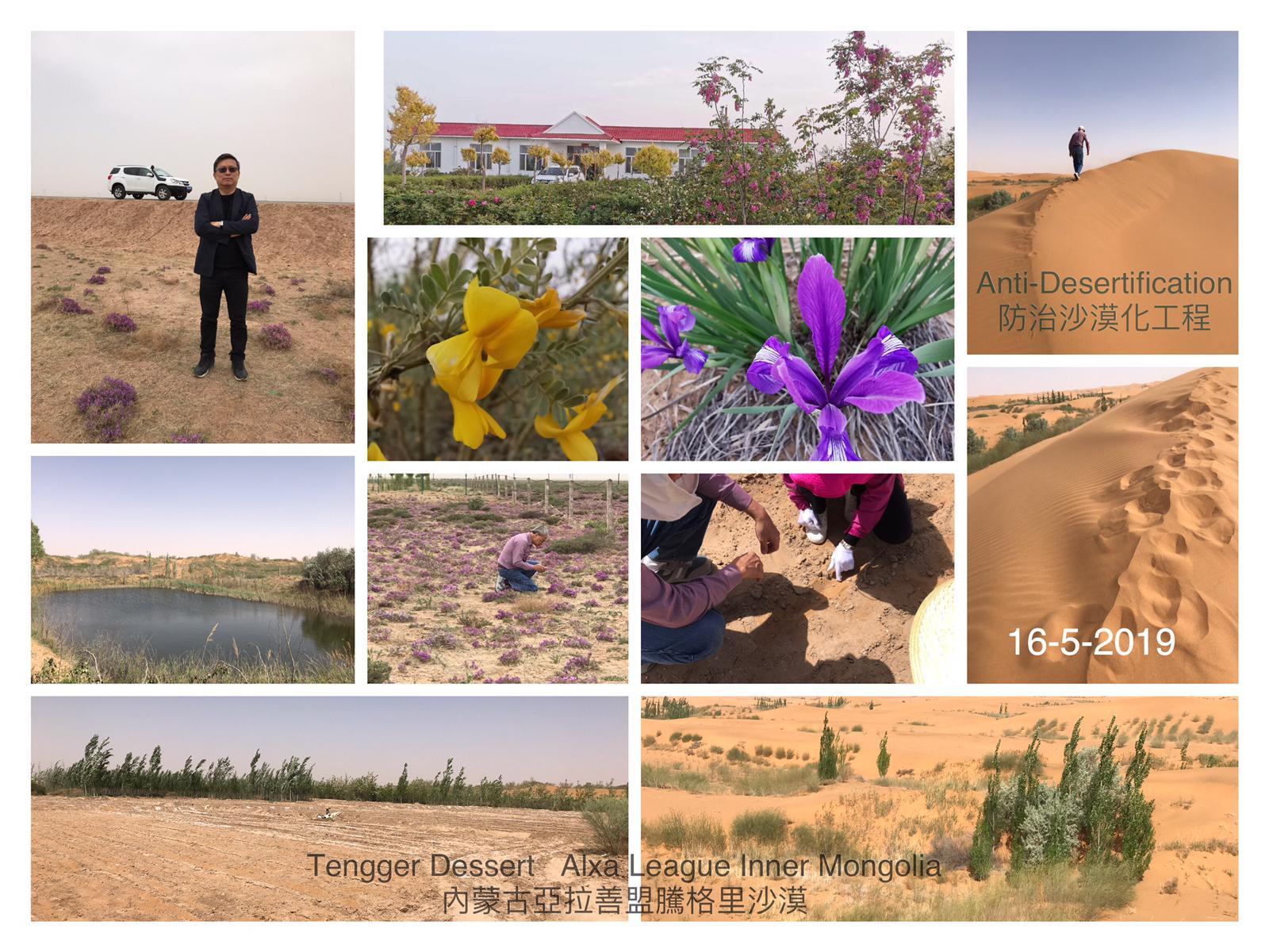 林家強博參觀-內蒙古拉善盟騰格里沙漠